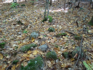 Possible Indian Cairn